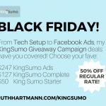 Black Friday Offer - Facebook Ads for KingSumo Giveaway Campaigns!